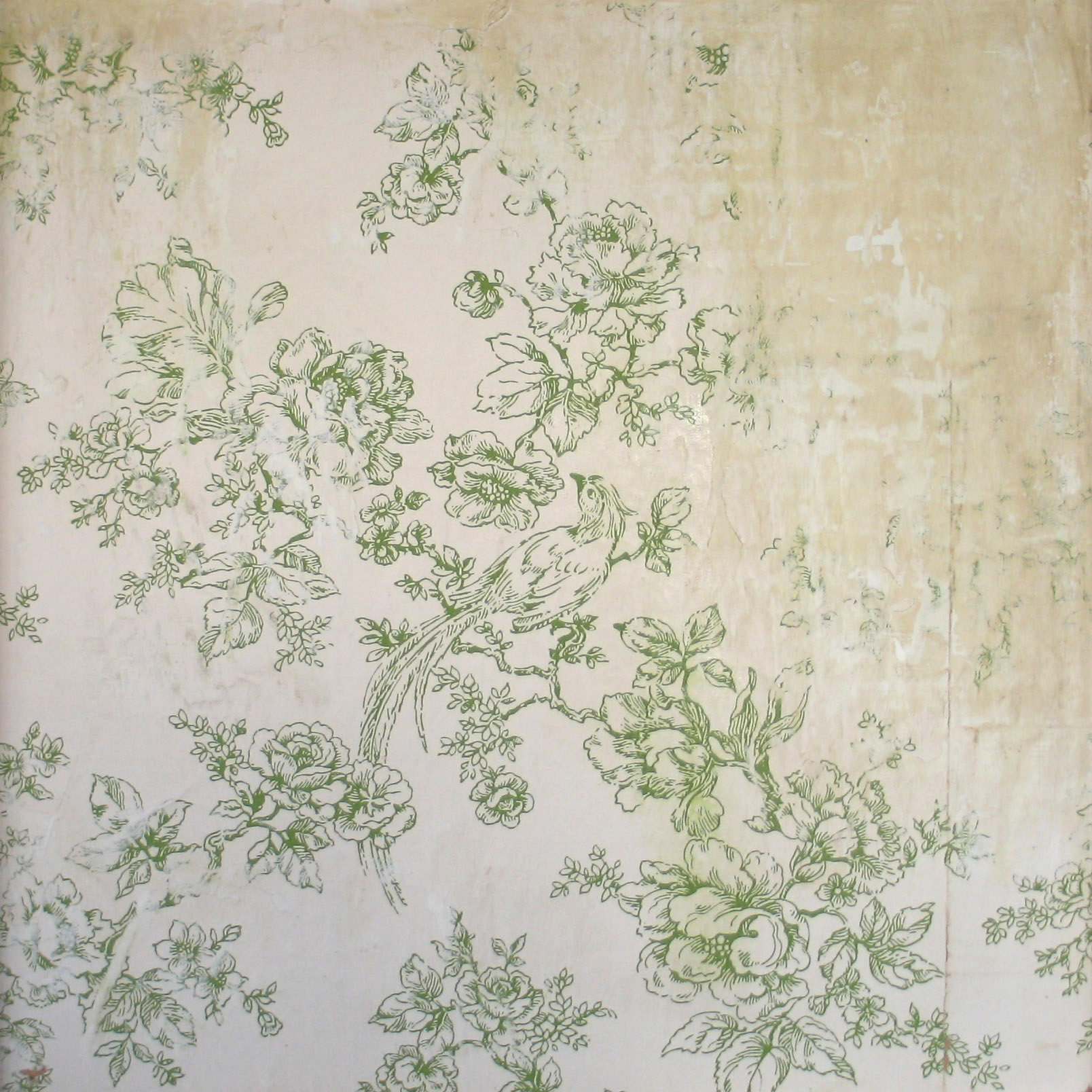 wallpaper and plaster